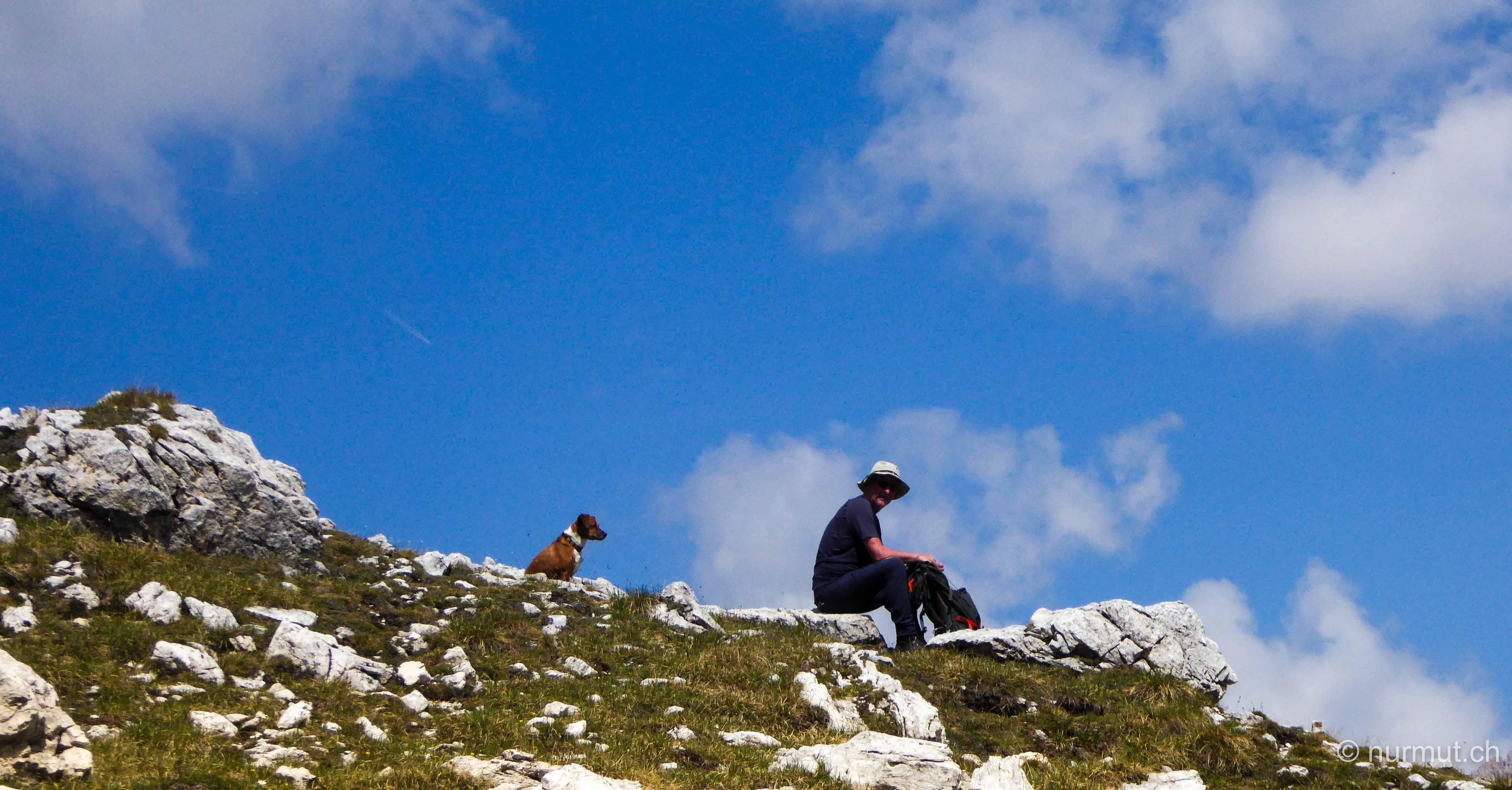 Wanderung-mit-Hund-Dolomiten