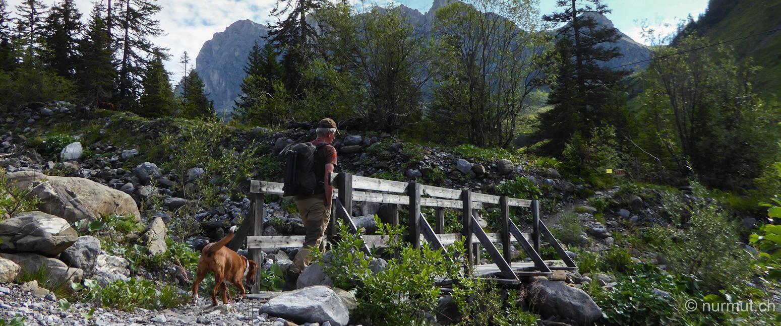 sankt antoenien-partnunsee im praettigau-wandern mit hund- nurmut