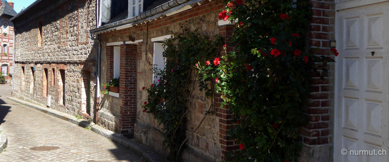 norden frankreichs-nordfrankreich-wohnmobil-wandern mit hund-normandie-veules-les-roses