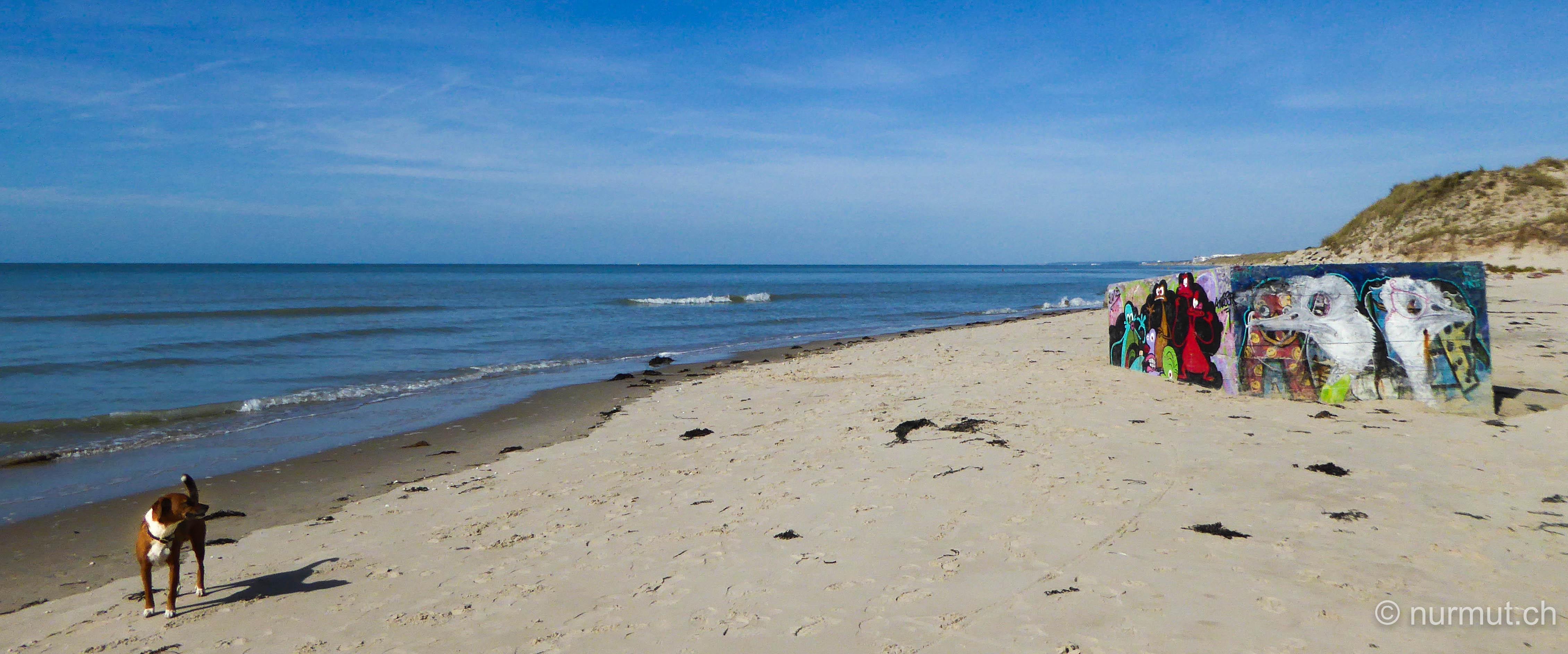 norden frankreichs-nordfrankreich-wohnmobil-wandern mit hund-picardie-berck plage