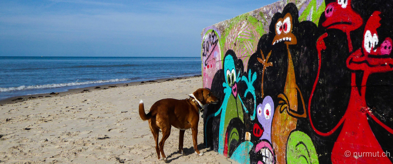 norden frankreichs-nordfrankreich-wohnmobil-wandern mit hund-picardie-berck plage-graffiti-bunker