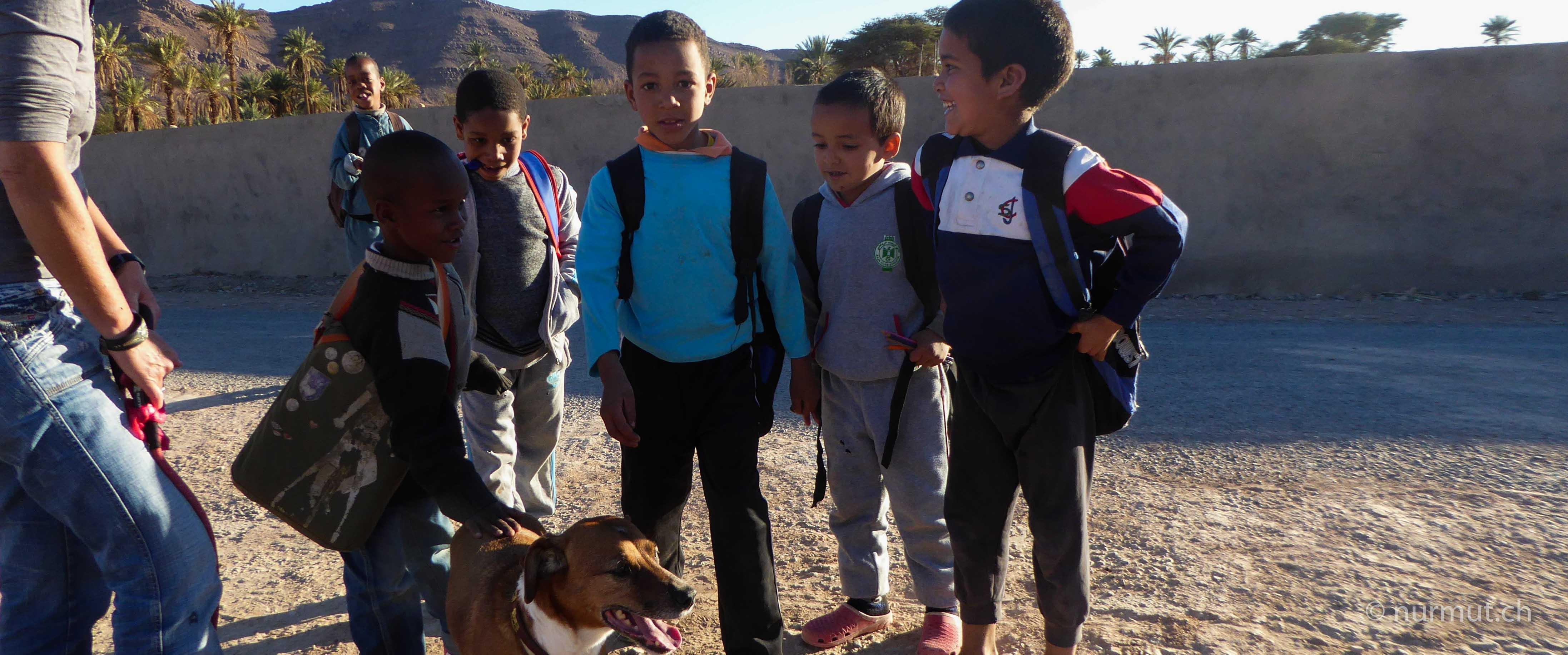 marokkoreise mit hund-marokko mit hund-marokko-infos marokko mit hund- marokkanische kinder mit hund-nurmut