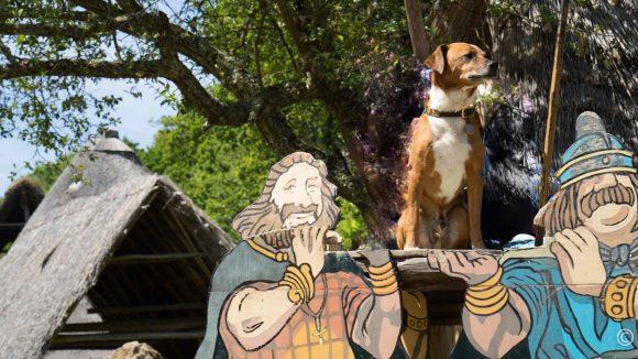 Bretagne-Gallien-Hund-Asterix-Wohnmobil