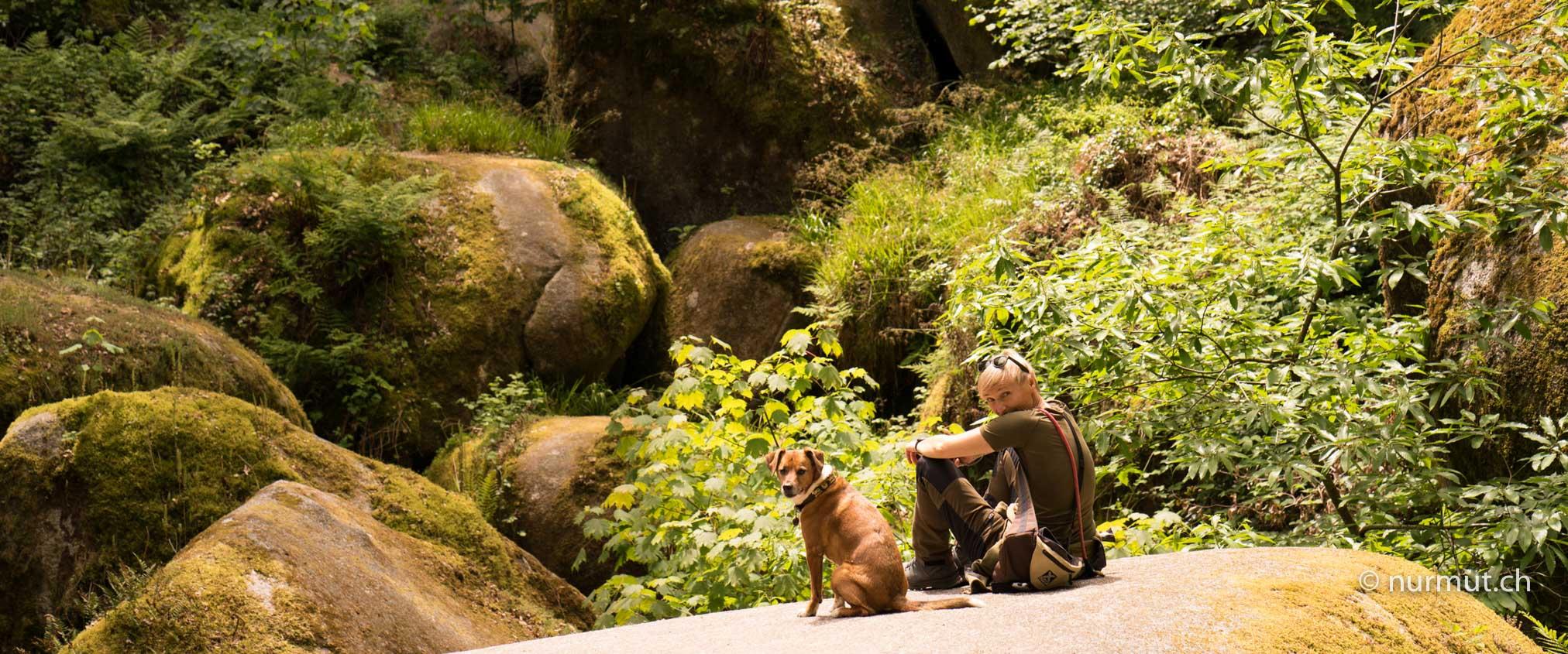 Bretagen-mit-Hund-Huelgoat-Zauberwald