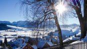Winterwanderung-mit-hund-im-appenzellerland