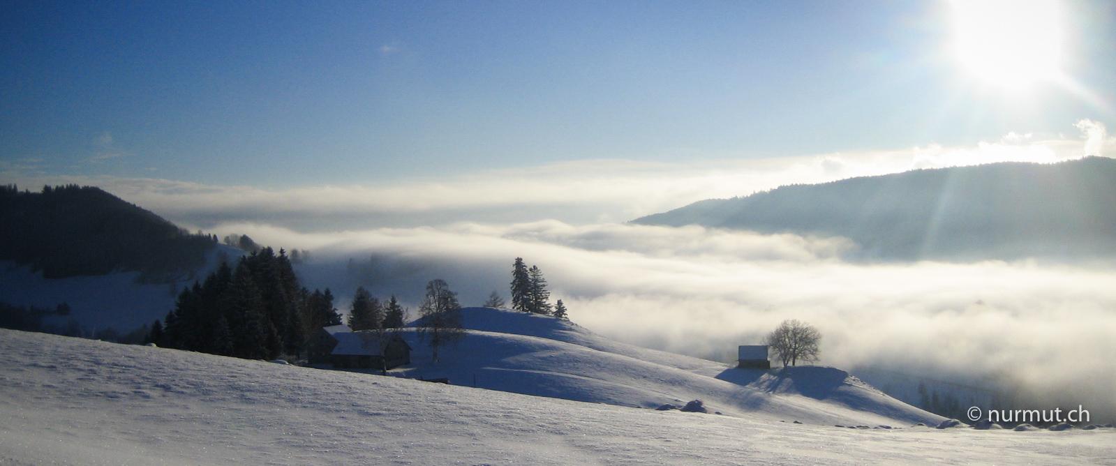 Gais-Appenzellerland-Nebelmeer-Winterwanderung-mir-Hund
