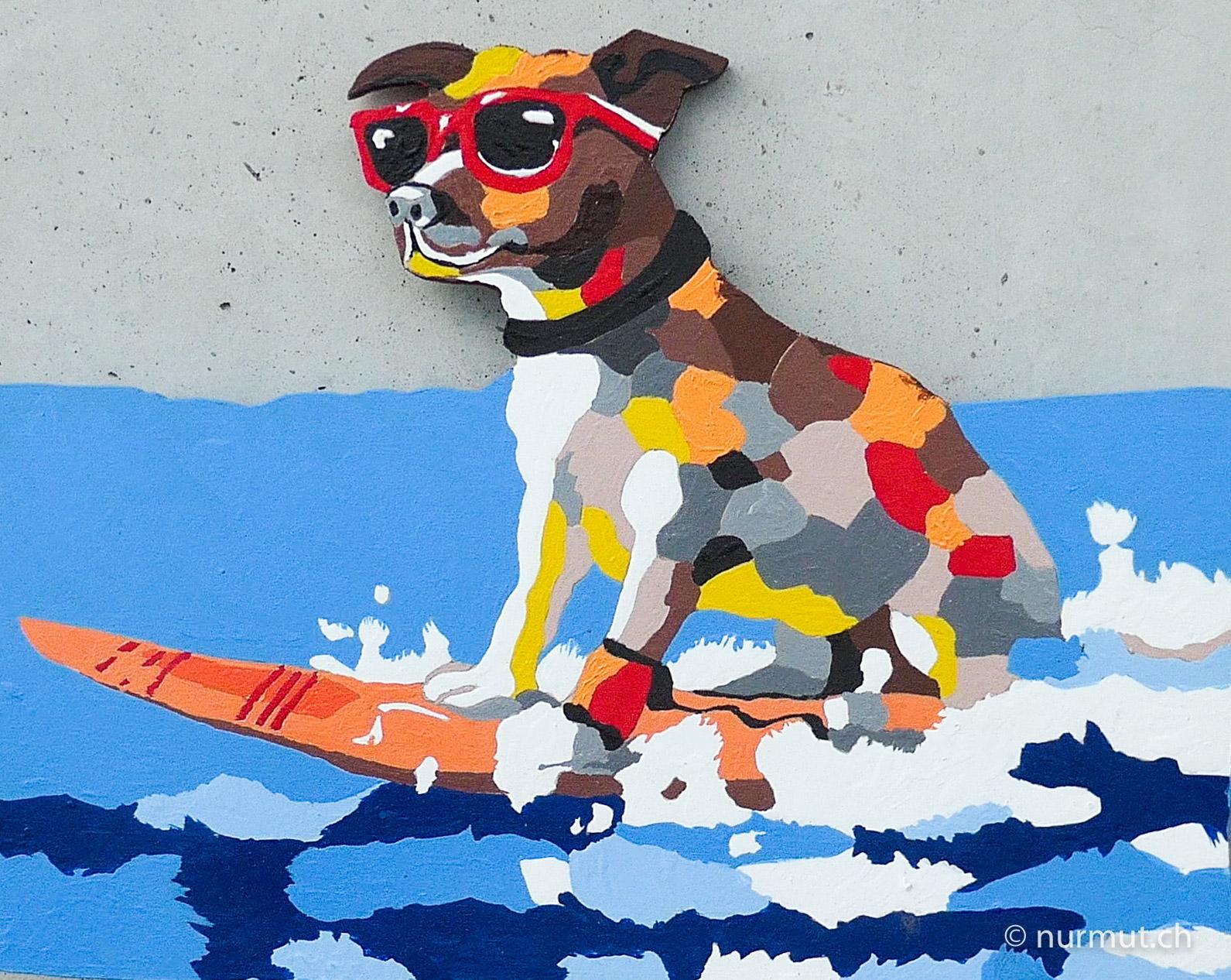 kunst-laubsägen-hund-surfen